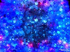 P1650097 (Christen Ann Photography) Tags: 2017 auckland christmas christmaslights christmaslights2017 december2017 lights motat motatevent museumoftransportandtechnology newzealand watermarked westernsprings