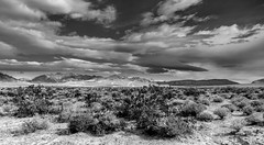 Valley of Fire-47 (Agirard) Tags: blackandwhite valleyoffire batis batis18 nevada usa rock geology bw sony a7ii landscape desert mojave sand sandstorm