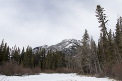 Fenland Trail (Velates) Tags: banff fenland winter canada banffnationalpark