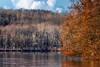 rebirth (david_sharo) Tags: nature landscape moraine statepark lakes trees