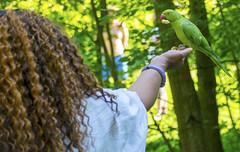 DSC_2171a (photographer695) Tags: wintrade rest recreation hyde park london feeding parakeet birds with nicole ross