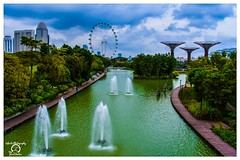 Singapore Flyer and Super Trees, from Gardens By The Bay, Singapore (Jared_Rawlins) Tags: landscape nikon beautiful asia gardenbythebaysingapore original march singaporeflyer skyline ferriswheel asian city clouds singapore garden bayfront landscapephotography marinabay travelbloggers dark flyer buildings ilovesingapore modernart lights supertrees flickr gardens infinite day photography sky daytime cityskyline cloudy bright beautifulmatters gardensbythebay bay