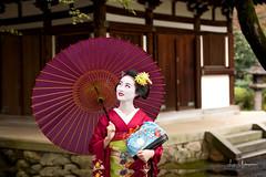 Mameryu - Maiko in Kyoto 20 (JUNEAU BISCUITS) Tags: hawaiiphotographer portrait portraiture model modeling beauty nikon nikond810 geisha maiko japan kyoto gion