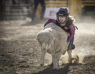 024693763286-97-Cowgirl Mutton Busting at the Clark County Fair and Rodeo-2