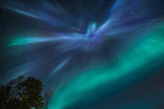 Splash in the sky (Sizun Eye) Tags: northernlights north arctic aurora auroraborealis borealis sky night stars norway arcticcircle splash sizuneye alta nikond750 nikkor1424mmf28 nikkor 1424mm