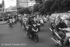 Ho Chi Minh (CATDvd) Tags: nikond70s cộnghòaxãhộichủnghĩaviệtnam repúblicasocialistadevietnam repúblicasocialistadelvietnam socialistrepublicofvietnam việtnam vietnam september2017 catdvd davidcomas httpwwwdavidcomasnet httpwwwflickrcomphotoscatdvd social ciudadhochiminh ciutathochiminh hcmc hochiminh hochiminhcity sàigòn saigon thànhphốhồchíminh