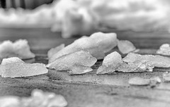 85:365 - Narrow Aperture (LostOne1000) Tags: icebergs spring blackandwhite cy365 nature tamronlenses 365challenge equipment tamron70200f28 march earlyspring 260318 snow weather seasons 3652018 365the2018edition scenery monochrome depthoffield pentax photography camera technicalphotography cold springsnow pentaxk1 day85365 ice marion iowa unitedstates us