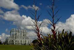 RenatoSoares_JardimBotanico_Curitiba_PR (MTur Destinos) Tags: fotoshumanizadas2018 jardimbotânico jardim parque natureza curitiba paraná pr mturdestinos