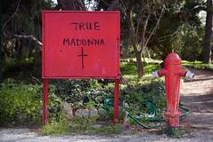 True Madonna (Dave_Davies) Tags: athens greece grafitti symbolism surrealism true madonna