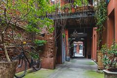 Calm (-MiDes-) Tags: street nikon tree town nature spring colors bike littlestreet shrubs old