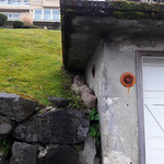 Rain, corners, moss on concrete roof, old garage, stone wall,  rusted vents, view house, Dash Point, Washington, USA thumbnail
