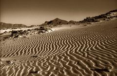 162-Algeria-Ultime dune (tomorme) Tags: algeria dune viraggio