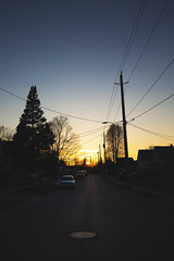 forces pulling (viewsfromthe519) Tags: sunset sun stthomas ontario sky skyscape clouds silhouette blue orange yellow golden trees canada evening spring