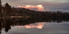 Cloud reflections (hjuengst) Tags: pink clouds wolken lake see woods wald trees bäume panorama bavaria bayern rosa symmetry steinsee moosach oberseeon