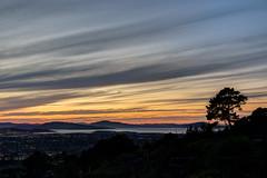 The Hill and the Tree (supra455) Tags: bay black cerrito el francisco orange san sunset tree water elcerrito california unitedstates us