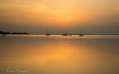 Amanece, que no es poco (pedrojateruel) Tags: santiago de la ribera amanecer