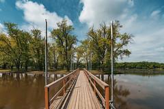 Lion's Levee Park Bridge - Mississippi River (Tony Webster) Tags: lionsleveepark minnesota mississippiriver saintpaulpark stpaulpark bridge island islandpark park river spring unitedstates us