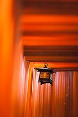 The Lantern (Fab Photographe) Tags: fushimiinari torii lantern minimal zeiss ze aposonnart2135 red japan kyoto