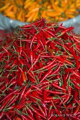 Hanoi - Dong Xuan Market (Rolandito.) Tags: hanoi dong xuan market vietnam chilli peppers chilly chillies closeup