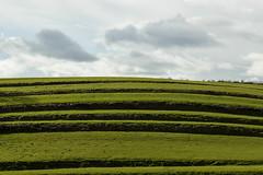 Se irán los nubarrones. (carlosgsanmillan) Tags: francia france verde green campo cesped landscape aquitania pays basque pais vasco ainhoa trav travel viaje spring primavera
