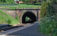 Ludlow 220518 - DSC_0742 (Leslie Platt) Tags: exposureadjusted straightened cropped shropshire birthdaytreat ludlowrailwaystation railwaytunnel
