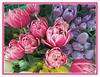 Gorgeous Tulip Mix (bigbrowneyez) Tags: tulips fiori fleurs fabulous peonytulips gorgeoustulipmix pastels purplepink bouquet lovely fresh nature natura belli bellissimi foto adorable fancy delightful striking stunning elegant scented perfumed pretty petals colours colourful