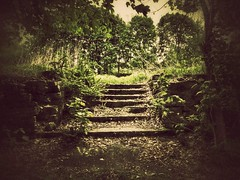 remember when... (BillsExplorations) Tags: abandoned forgotten ghosttown centralia pennsylvania minefire historic coalfire coal home green silenthill remember stairs ruins