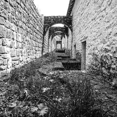 ....round the back of the cottages.... (paulchapmanphotos) Tags: leica m246 monochrom blaenavon wales 21mm summilux f14