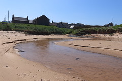 St Combs Beach_may 18_648 (Alan Longmuir.) Tags: stcombsbeach grampian aberdeenshire stcombs