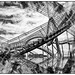 Tiger and Turtle, abstract