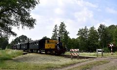 "MBS ""Magda"", Stepelo (cellique) Tags: mbs loc7 magda stoomtrein museumtrein haaksbergen boekelo spoorwegen treinen eisenbahn zuge railway train"