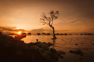 Sunset at Bodgaya Island