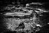 Découvertes archéologiques!! / Archaeological discoveries!! (vedebe) Tags: netb nb bw monochrome abandonné architecture archéologie aixenprovence provence france ville city street rue