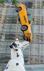 "Detail of ""Spot"" Sculpture (2018) by Donald Lipski, NYU Langone's Hassenfeld Childrens Hospital, New York City (jag9889) Tags: 2018 20180530 animal architecture art artwork artist auto automobile balance building car creature dalmatian detail dog figure hospital house kipsbay kunst manhattan midtown midtowneast monumental ny nyc nyu nyulangone newyork newyorkcity newyorkuniversity nose outdoor plastik prius publicart school sculpture skulptur spot streetart taxi toyota transportation usa unitedstates unitedstatesofamerica university vehicle yellowcab jag9889"