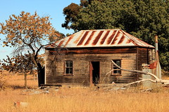 Autumnal (Darren Schiller) Tags: abandoned building corrugatediron derelict disused decaying deserted dilapidated dunedoo empty farmhouse galvanisediron history heritage house iron newsouthwales old rural rustic ruins rusty tin timber tree wreck