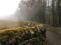 Harlaw Edinburgh (John_McK) Tags: 2018 march mist fog rain cold winter spring reservoir harlaw scotland edinburgh