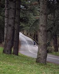 La course / 1 (CaroDiario) Tags: parc park jogging joggeur course run route road panasonicdcgh5 lumixg425mm17