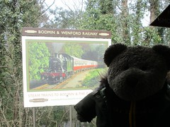 End of the line (pefkosmad) Tags: tedricstudmuffin teddy ted bear cute cuddly animal toy stuffed soft plush fluffy holiday week holibob cottage cornwall bodmin cardinham westcountry westsidecottage daysout trips touring tourist tourism adventures sign