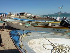 photo_1786179141603290