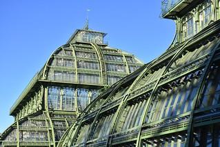 Schönbrunn glasshouse