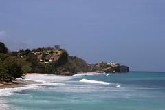 Caribbean seashore