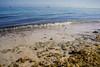 Kish Island, Iran ($ALEH) Tags: kish beach sea iran nature ships far away travel wave water ocean middleeast persiangulf asia خلیجفارس خاورمیانه ایران دریا کیش جزیره island ساحل طبیعت کشتی سفر دوردست اقیانوس آب