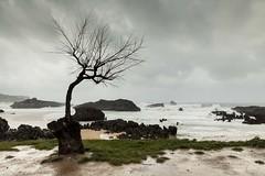 Fuerte marejada en el Cantábrico. Editada (Txaro Franco) Tags: nwn mar playa itsasoa sea plage hondartza nubes clouds hodeiak