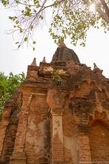 Myanmar-20180324-1267 (ShaneAndRobbie) Tags: nyaungu mandalayregion myanmarburma mm myanmar burma bagan pagoda temple baganarchaeologicalzone baz