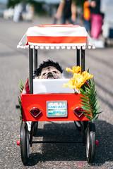PugCrwal-191 (sweetrevenge12) Tags: pug parade crawl brewing sony pugs dog pet