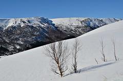 mot klevan (KvikneFoto) Tags: vinter winter snø snow natur landskap tamron nikon