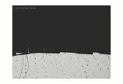 Rain! (Dang Thanh Nguyen) Tags: rain 5dmarkiv canon blackwhite lightroom