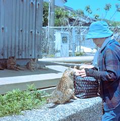 img261 (karl0513) Tags: film filmphotography filmisnotdead 120film portra400 rolleicord japan epson v600