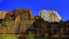 The Great White Throne : Zion National Park (Clement Tang **busy**) Tags: travel zionnationalpark usa america thegreatwhitethrone theorgan westernutah hdr cplfilter concordians closetonature mountain summerafternoon scenicsnotjustlandscapes nature nationalgeographic geologicalfeature landscape bluesky pinetree whitenavajosandstone ngc navajosandstone