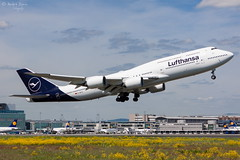 Lufthansa (ab-planepictures) Tags: fra eddf frankfurt flugzeug flughafen plane planespotting airport aircraft aviation
